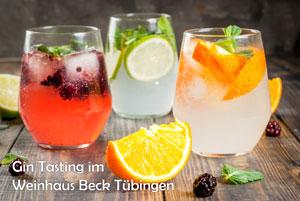 Gin Seminar Tasting Tübingen
