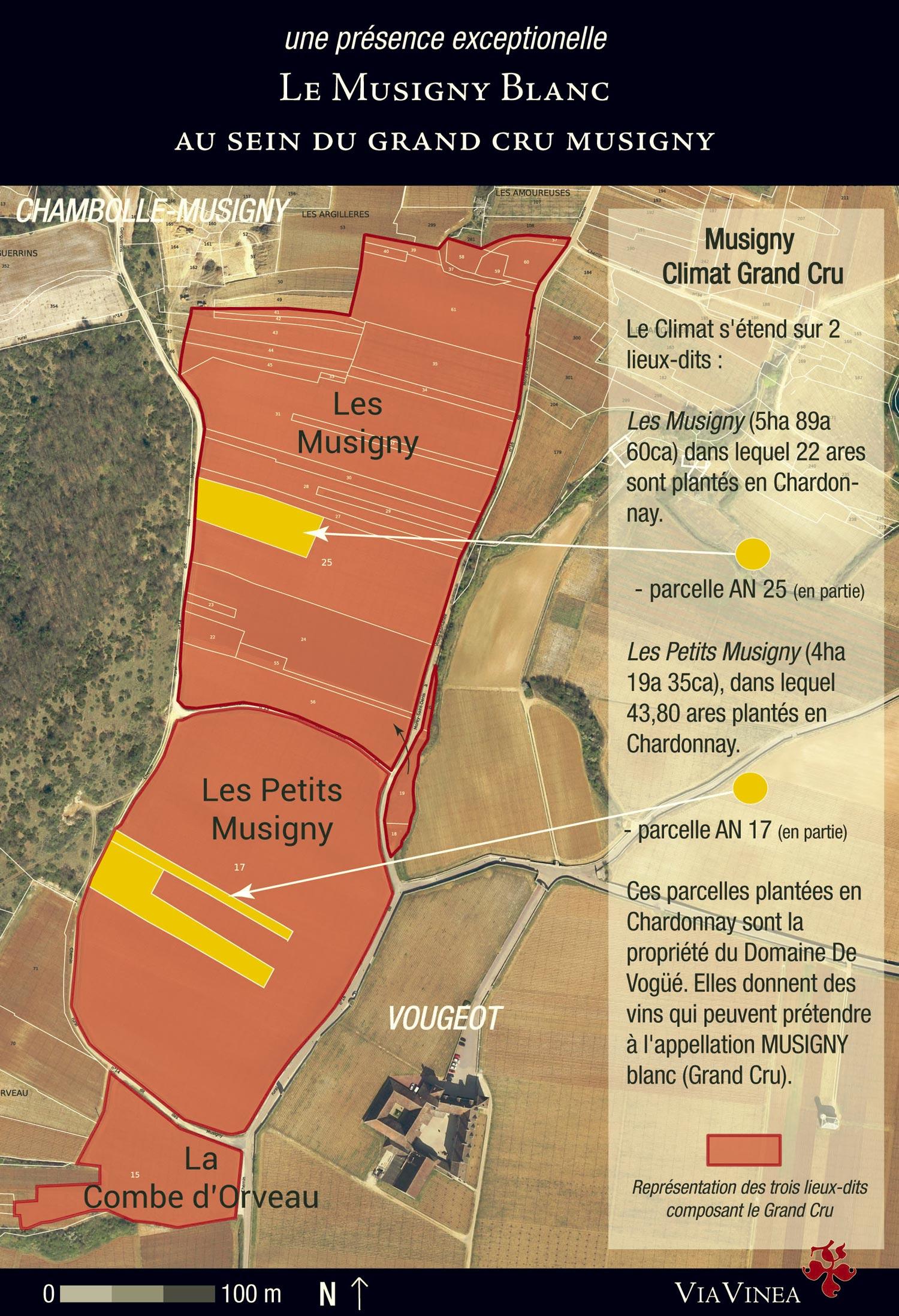 map-musigny-blanc-full