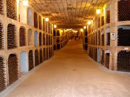 Weinkeller Moldau