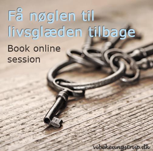 Shop, onlinesession, VIbeke Ungstrup, Hillerød, Helsinge, Nordsjælland