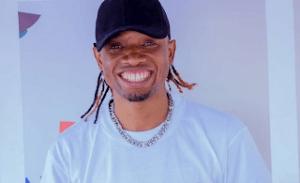 Download | Dulla Makabila – MNYAMA Mp3 Audio