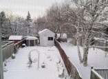 A view from my window on my snow-covered and deeply asleep garden.