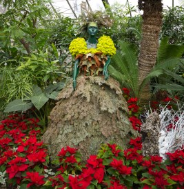 Lady with a Swan topiary, Allan Gardens Christmas show, 2016