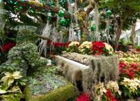 Penguin Playing Piano Topiary, Christmas show, Allan Gardens 2016.