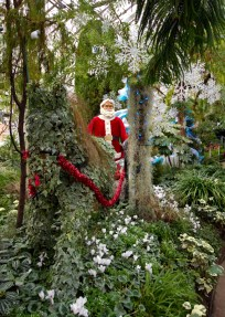 Santa, Allan Gardens, Christmas show, Toronto, 2016.