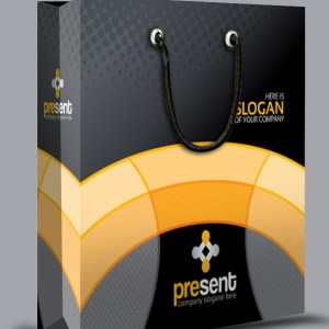 Present Shopping Bag Template