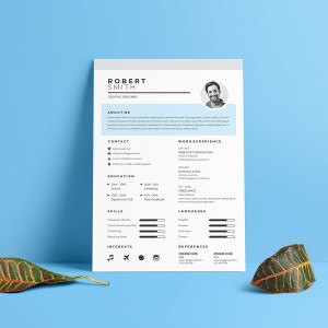 A4 Sleek Resume Template
