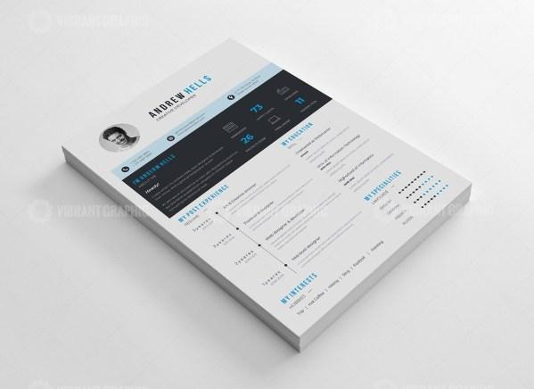 Clean Vector Resume CV Design