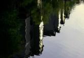 ripple reflection