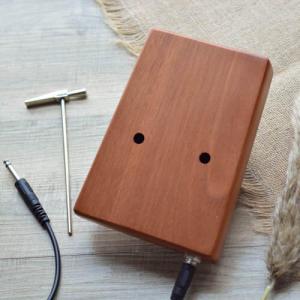 Electrical Kalimba 17 Mahogany Classical 09