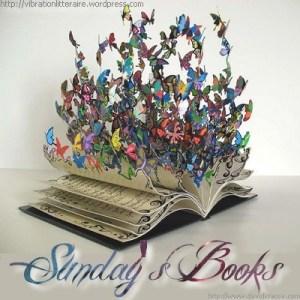 sunday's books