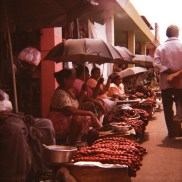 Ladies seeking shade, Goa