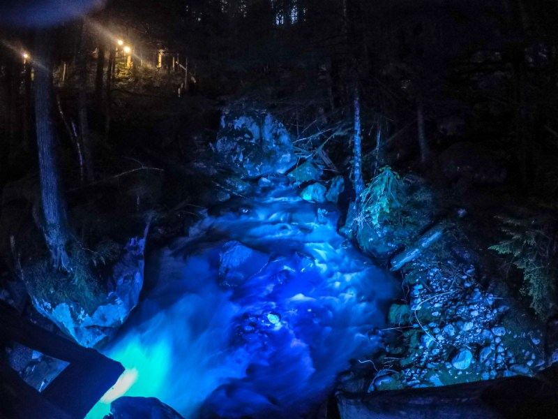 night hike, newhalem, north cascades national park, waterfall
