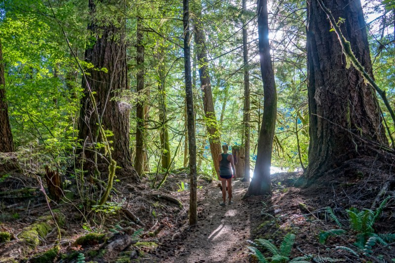 north cascades national park, newhalem campground, hiking, pacific northwest, washington state