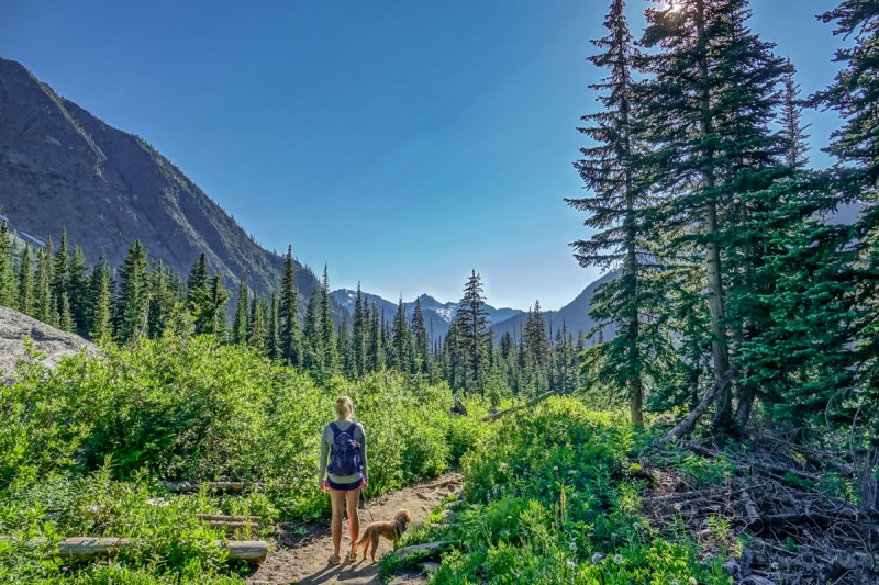 north cascades national park, blue lake trail, hiking, with with pets, dog friendly hikes