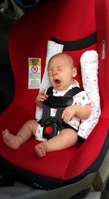 AL infant routing