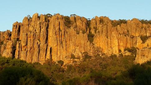 Organ Pipes Sunrise MOR small