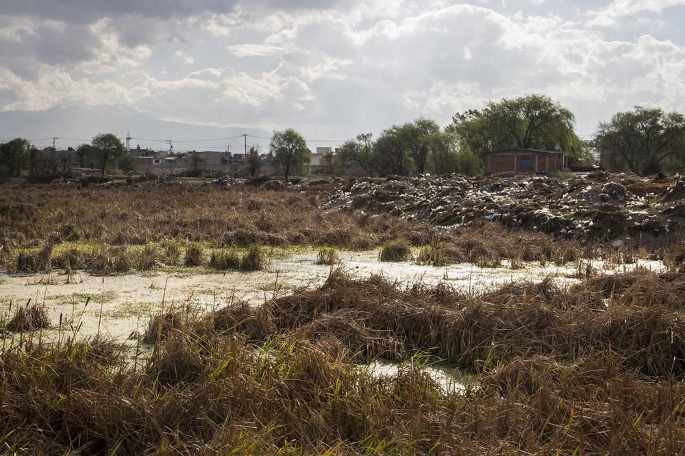 Lo que anteriormente era una reserva ecológica hoy es el lugar donde la gente avienta escombros, basura y hasta perros muertos.