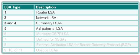 ospf lsa 1