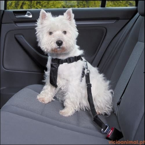 Peitoral Cinto Segurança p/Automóvel
