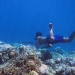 Gene Change May Have Helped Indonesia's Deep-Sea Divers