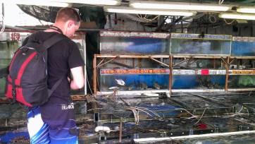 Day 6: Seafood Stall at Cheung Chau