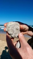 Cronulla Beach: Rocks