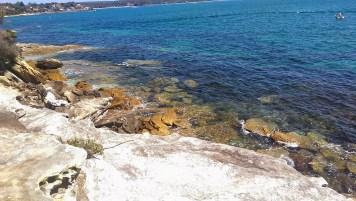 Jibbon Beach: View