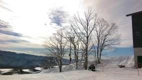 Ski Trip Jan 2015 D5: Trees