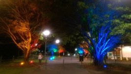 Cairns, June 2015: Colourful Town