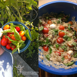 Photo Sunday: From Garden to Table