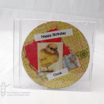 Happy Birthday Chick – Recycled CD Birthday Card