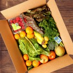 Eating Better in Ohio with Door to Door Organics