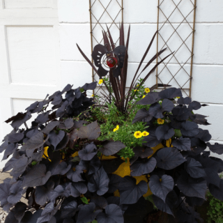 Vintage Tire Planter Makeover