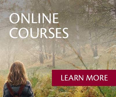 Online Courses - Vicki Tidwell Palmer