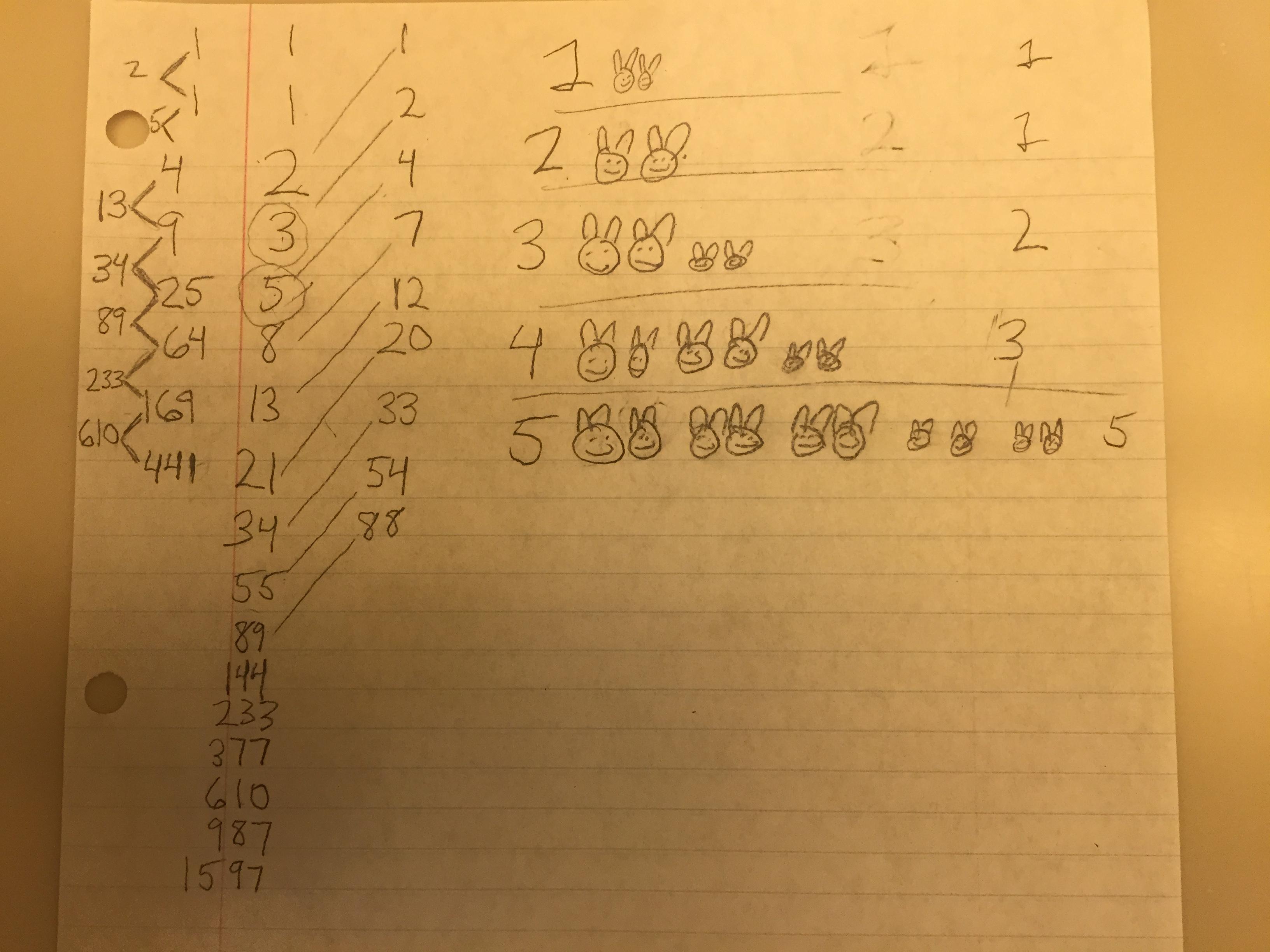 Lots Of Bunnies Age 7 Vickrey Math Circle
