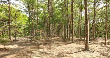 台南景點︱虎山林場、西瓜山步道,親子踏青去,散步後到微笑虎山喝咖啡,周末就是要休閒感