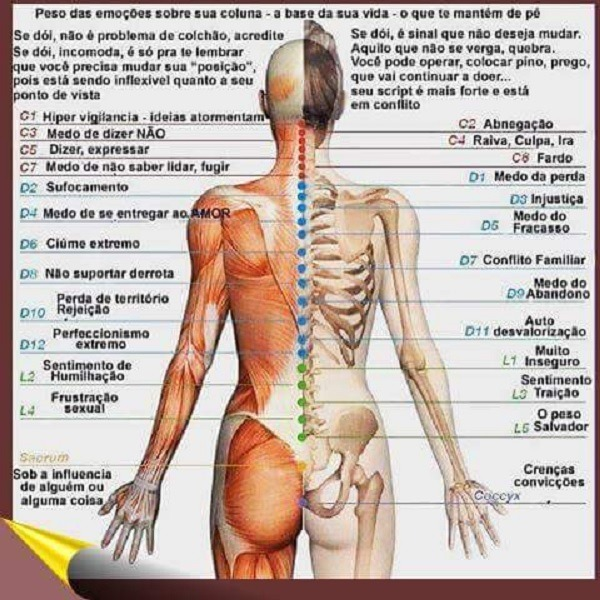 dor na coluna e as emoções - saiba mais - Vico Massagista, Quiropraxia, Massagem, Massoterapia, Acupuntura - dor lombar, nas costas, coluna, torcicolo, nervo ciático, torcicolo