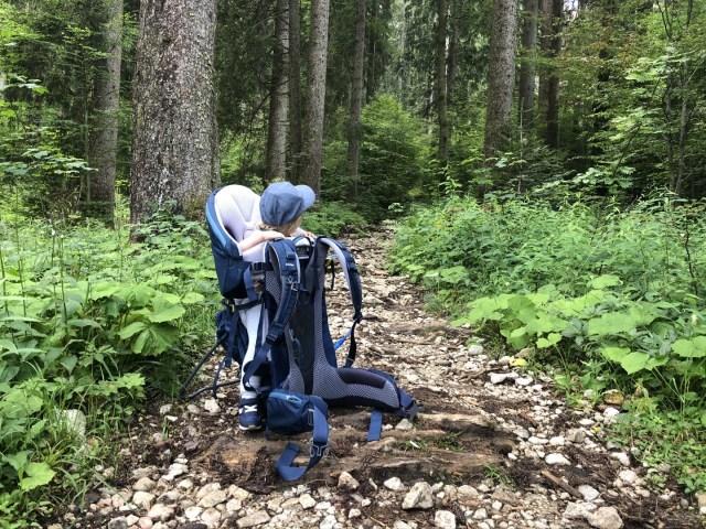 Durch den Wald geht es dann ganz nach oben zur Tutzinger Hütte