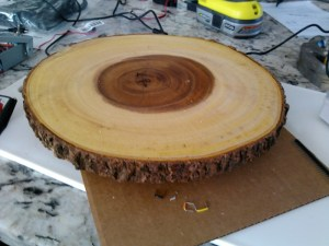 The wooden burl base of the tree