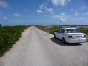 Birthday-in-Bonaire-80