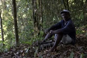 jungle-in-suriname-101a