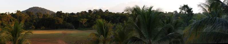 jungle-in-suriname-116