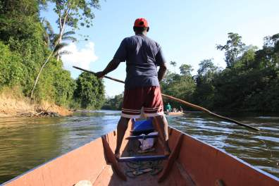 jungle-in-suriname-56