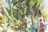 Moraleja Rose Garden 1994