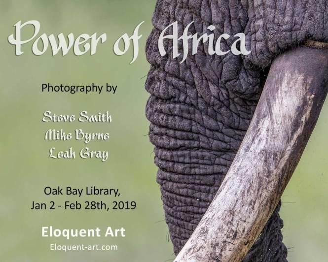 Oak Bay Library show Jan 2 - Feb. 28