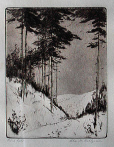 Pine Hill by Charles Dahlgreen