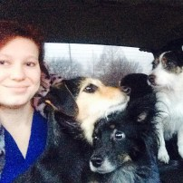 This is from winter 2015 in Kansas. My three babies are going for a ride to drop me off at work. I love them so much!