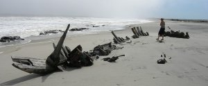 All that is left of the famous vessel. (Image via Trekity)