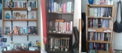 bookshelf-meme